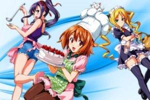 ecchi, Manga, Maken ki!