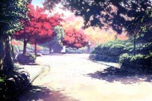 street, Trees, Park, Fence