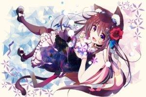 anime, Nekomimi, Original characters