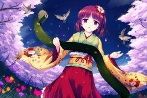 Touhou, Kimono, Hieda no Akyu