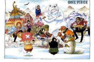 One Piece, Nami, Nico Robin, Sanji, Roronoa Zoro, Snow, Usopp, Tony Tony Chopper