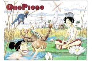 One Piece, Monkey D. Luffy, Nami, Tony Tony Chopper