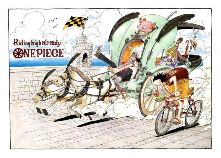 One Piece, Monkey D. Luffy, Racing, Tony Tony Chopper, Usopp, Sanji HD Wallpaper Desktop Background