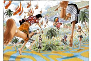 One Piece, Nami, Sanji, Nico Robin, Roronoa Zoro, Usopp, Monkey D. Luffy