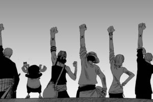 One Piece, Roronoa Zoro, Tony Tony Chopper, Usopp, Monkey D. Luffy, Nami, Sanji