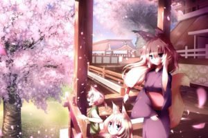 anime girls, Inumimi, Animal ears, Cherry blossom, Traditional clothing, Original characters