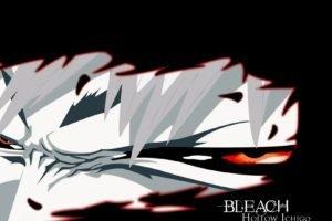 anime, Bleach, Kurosaki Ichigo, Hollow