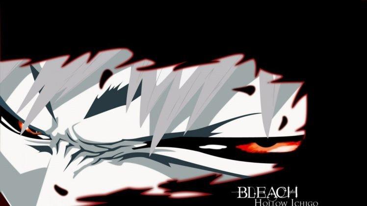 anime, Bleach, Kurosaki Ichigo, Hollow HD Wallpaper Desktop Background