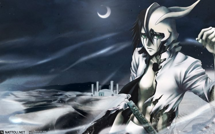 Anime Bleach Ulquiorra Cifer Espada HD Wallpaper Desktop Background