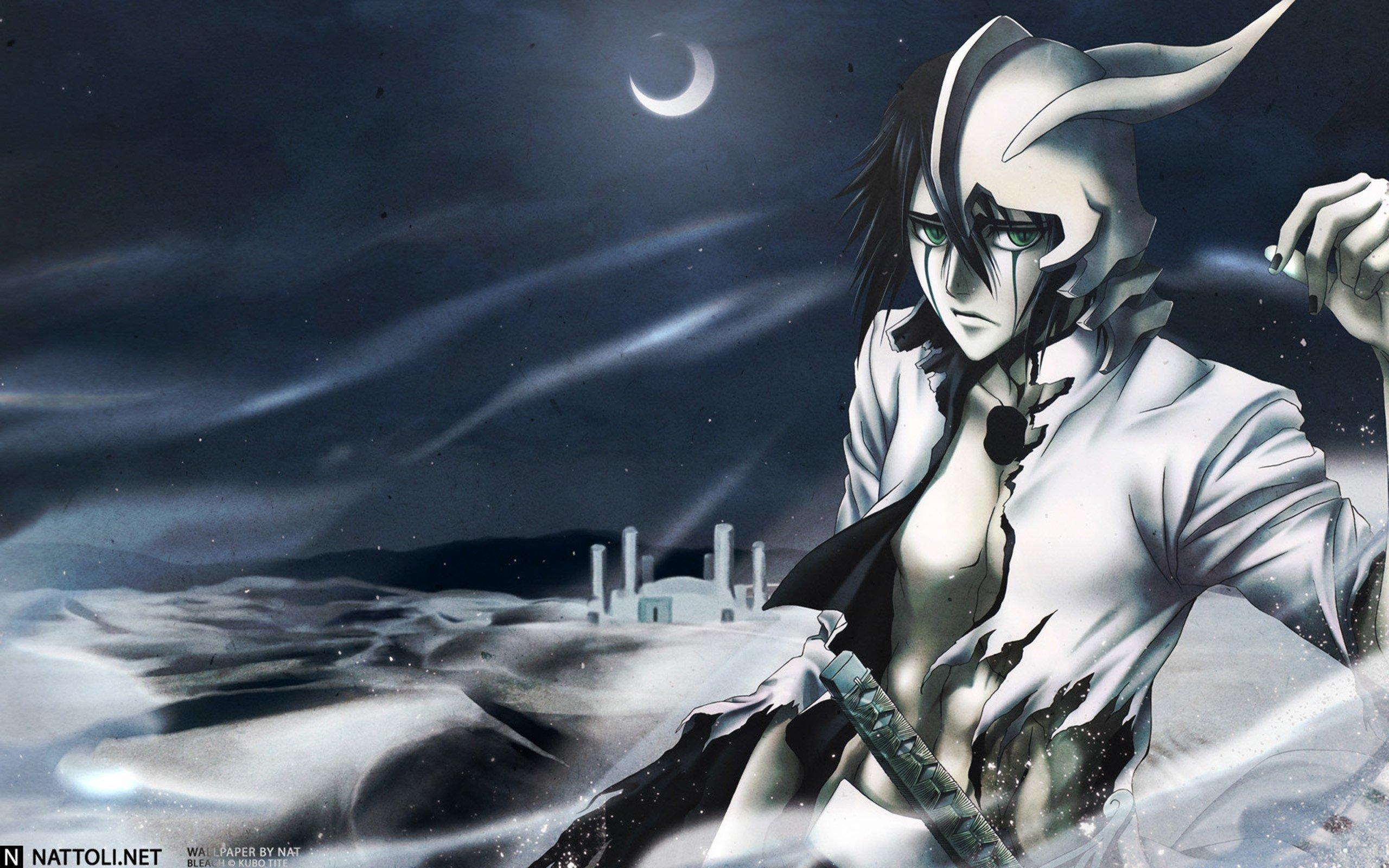 Anime Bleach Ulquiorra Cifer Espada HD Wallpapers Desktop And Mobile Images Photos