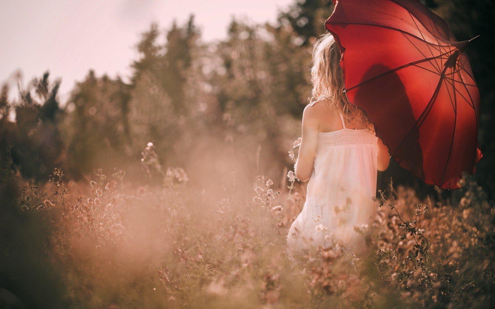 women, Umbrella, Blonde, Forest Wallpaper