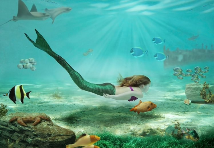 Women Fantasy Art Drawing Mermaids Sea Rock Underwater Swimming Fish Sunlight Crabs Brunette Long Hair Hd Wallpapers Desktop And Mobile Images Photos