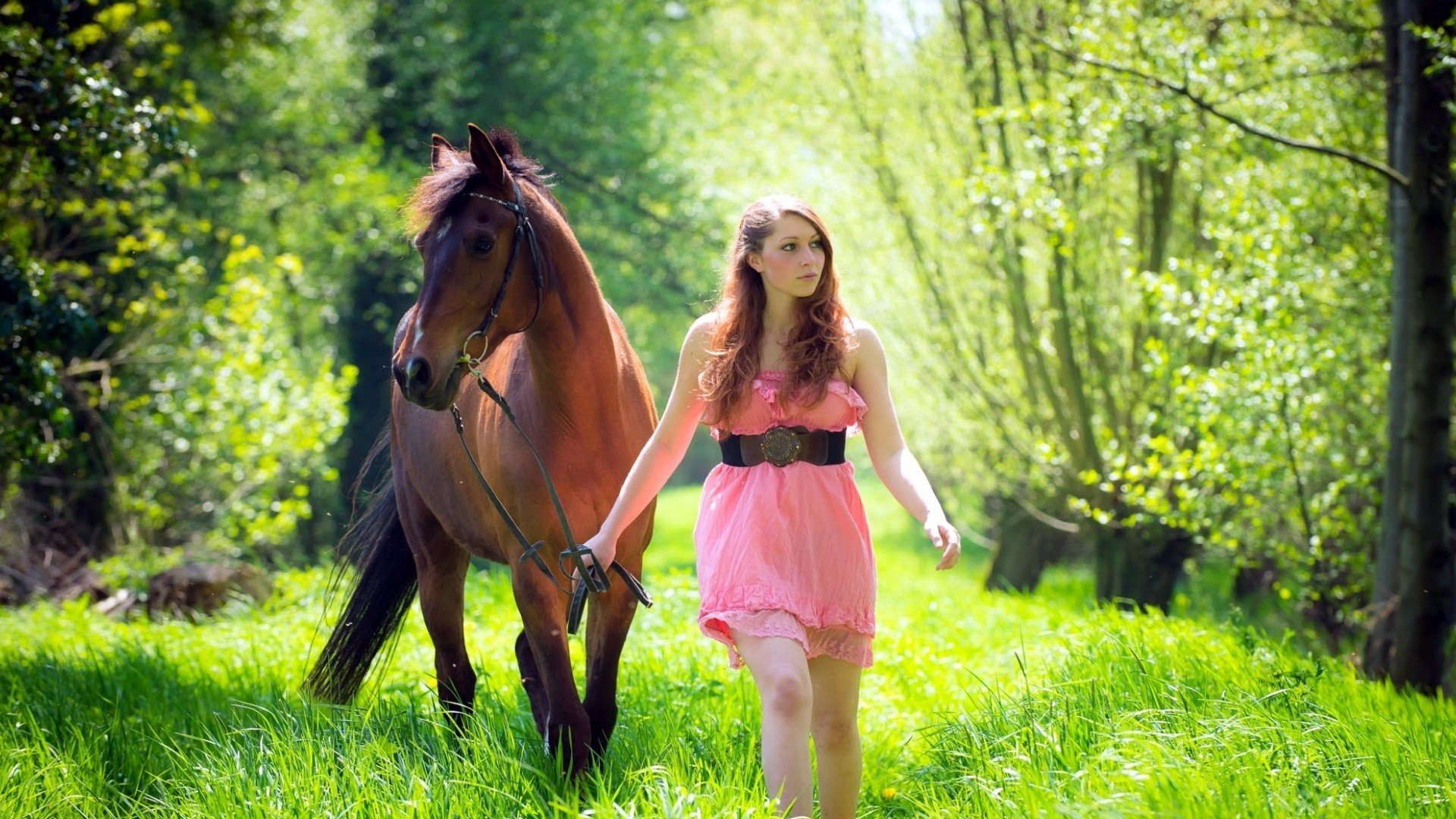women model brunette long hair horse animals women outdoors dress nature trees grass. Black Bedroom Furniture Sets. Home Design Ideas