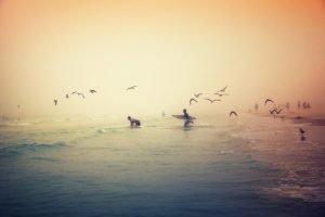 Omaha Beach, Beach, Surfers