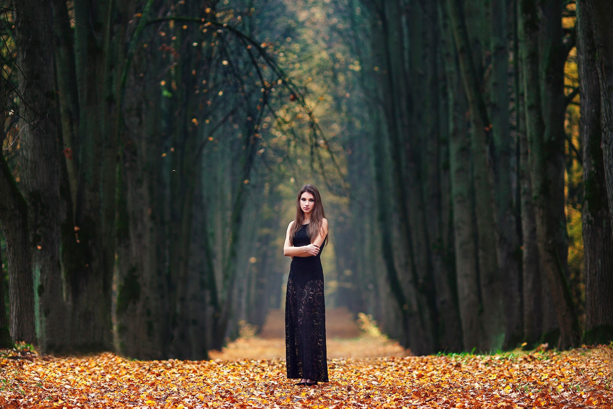 Women, Brunette, Fall, Women Outdoors, Dress, Trees Hd