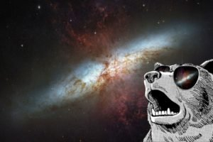 animals, Sunglasses, Space art, Space, Galaxy