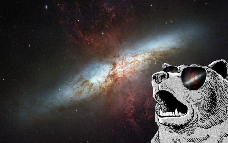 animals, Sunglasses, Space art, Space, Galaxy HD Wallpaper Desktop Background