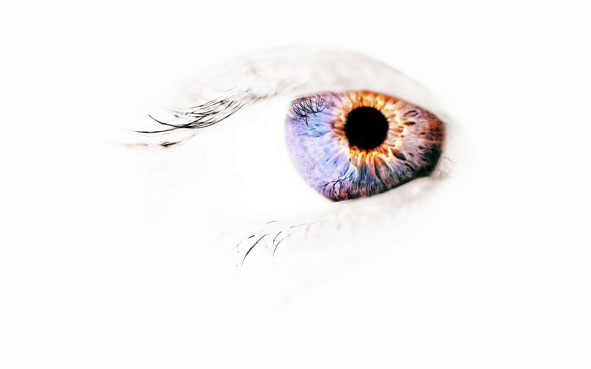 eyes, Negative space HD Wallpapers / Desktop and Mobile Images & Photos