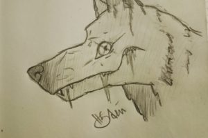 wolf, Drawing, Space art