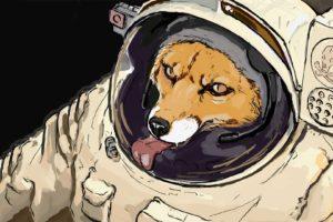 starfox, Space, Fox