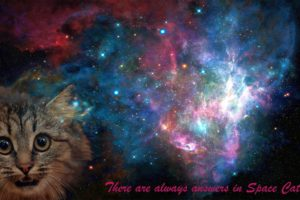 space, Cat, Space cat, Galaxy