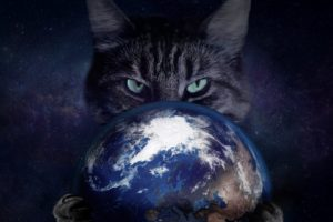 space, Cat, Earth