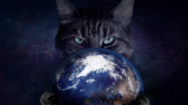 Space Cat Earth HD Wallpaper Desktop Background