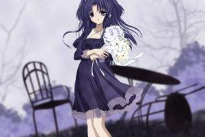 Clannad, Anime, Ichinose Kotomi