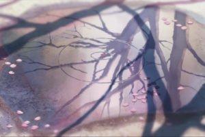 5 Centimeters Per Second, Puddle, Reflection, Flower petals, Cherry blossom, Makoto Shinkai