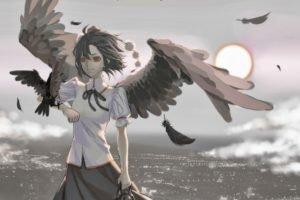 Touhou, Wings, Shameimaru Aya