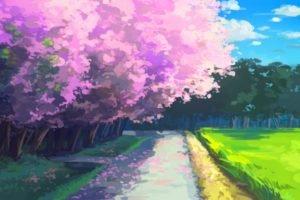 anime, Cherry blossom