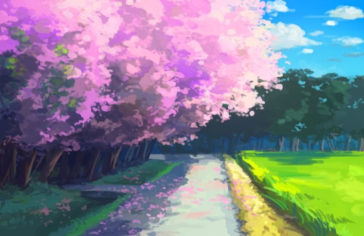Anime Cherry Blossom Hd Wallpapers Desktop And Mobile