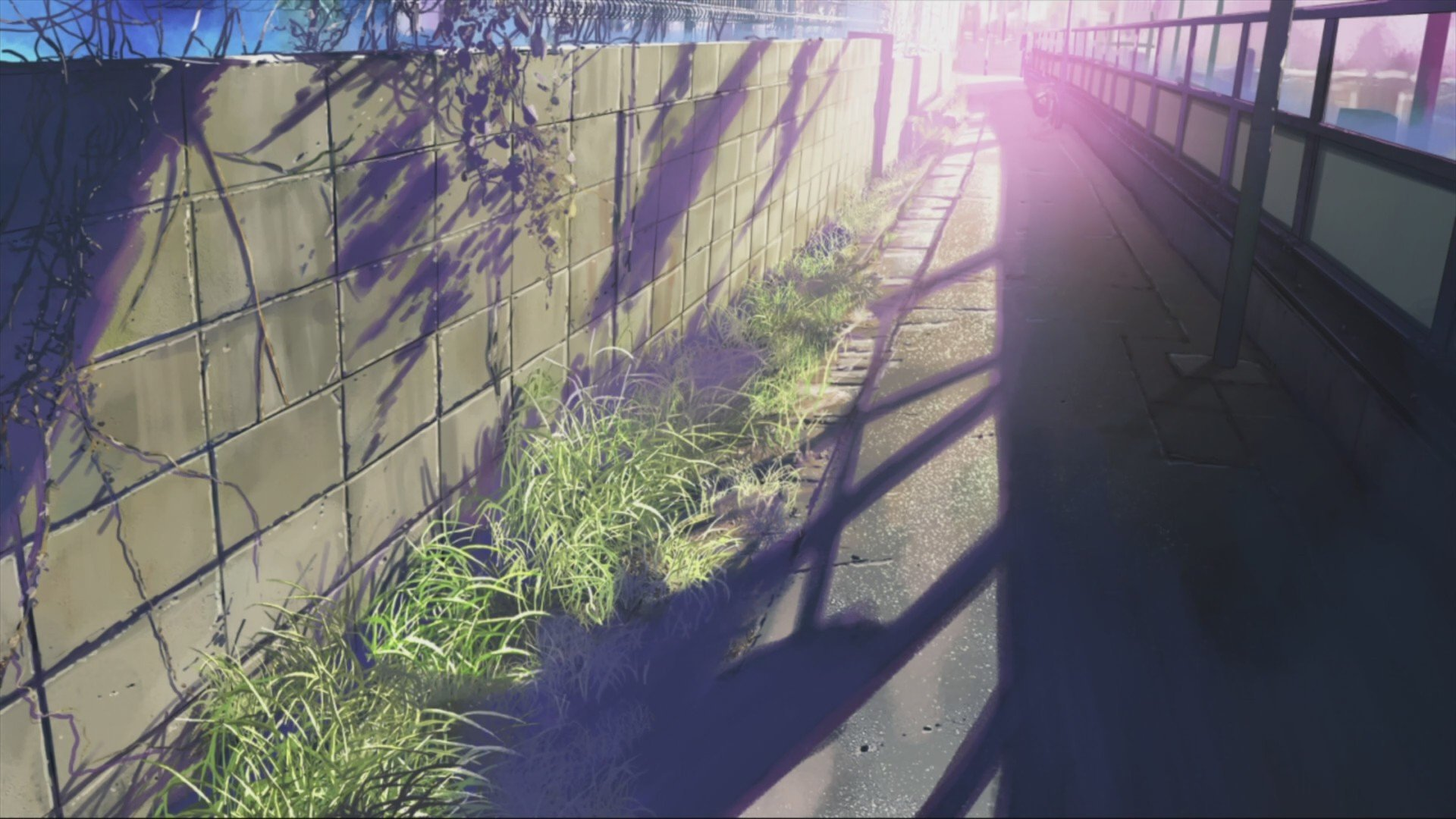 anime, 5 Centimeters Per Second, Makoto Shinkai Wallpaper