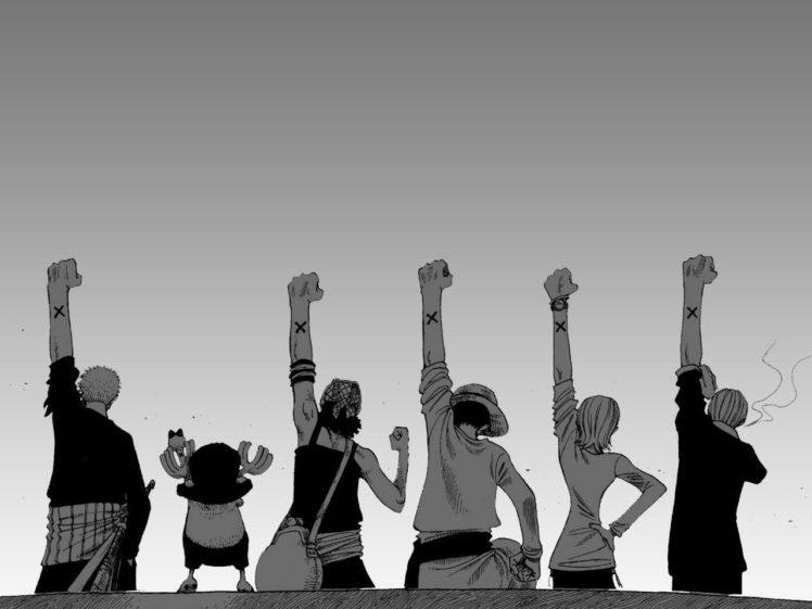 One Piece, Monkey D. Luffy, Roronoa Zoro, Tony Tony Chopper, Usopp, Nami, Sanji, Strawhat pirates HD Wallpaper Desktop Background