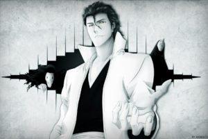 Bleach, Sousuke Aizen, Anime