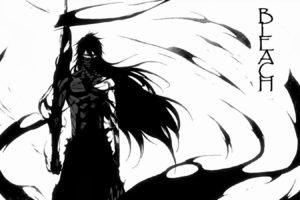 anime, Bleach, Kurosaki Ichigo, Mugetsu