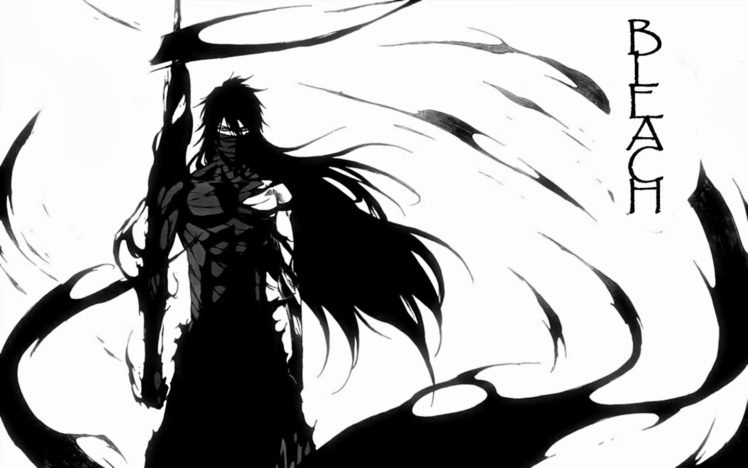 Anime Bleach Kurosaki Ichigo Mugetsu HD Wallpaper Desktop Background