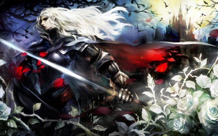 castle, Castlevania, Rose, RPG, Video games, Dragons Crown HD Wallpaper Desktop Background