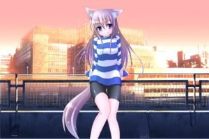 anime girls, Anime, Nekomimi, Animal ears, Original characters