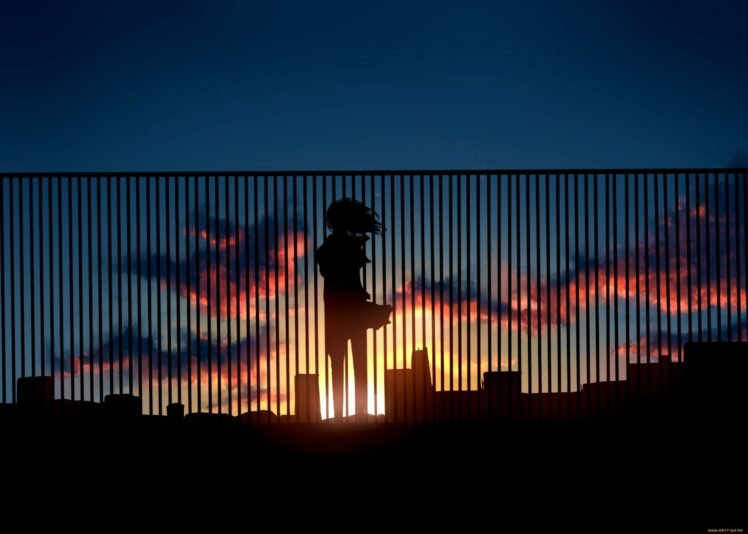 Anime Sunset Hd Wallpapers Desktop And Mobile Images Photos