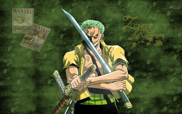104357 One Piece Roronoa Zoro