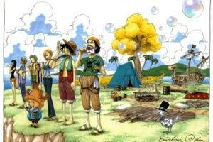 One Piece, Monkey D. Luffy, Tony Tony Chopper, Usopp, Nami, Roronoa Zoro, Sanji, Nico Robin