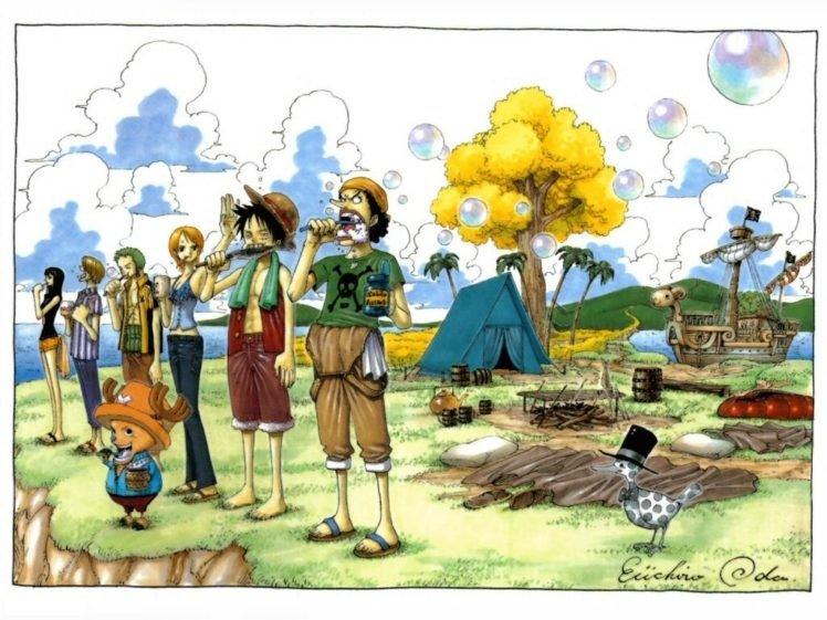One Piece, Monkey D. Luffy, Tony Tony Chopper, Usopp, Nami, Roronoa Zoro, Sanji, Nico Robin HD Wallpaper Desktop Background