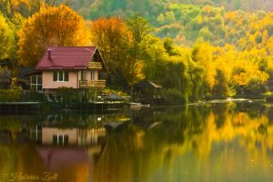 fall, Reflection, House