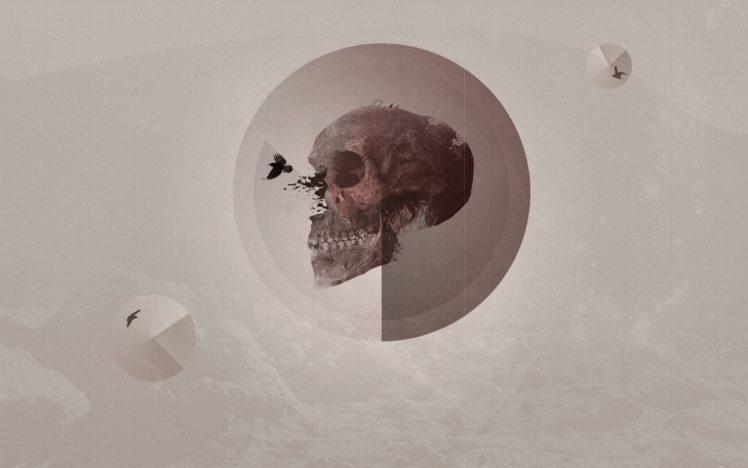 Digital Art Skull Simple Background Abstract Portrait: Abstract, Artwork, Skull, Simple Background, Raven HD