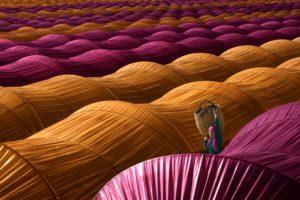 women outdoors, Farm, Colourfull