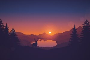 deer, Firewatch