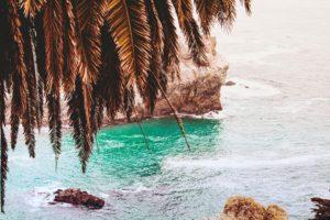 tropical water, Water