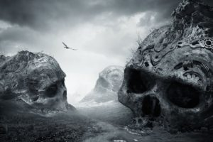 nature, Landscape, Dirtroad, Death, Monochrome, Birds, Flying, Dark, Skull, Photo manipulation