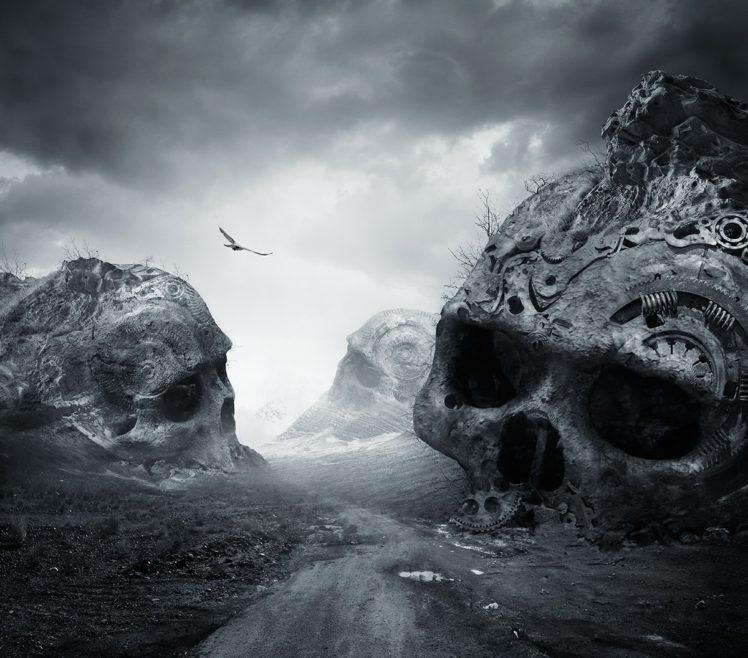 nature, Landscape, Dirtroad, Death, Monochrome, Birds, Flying, Dark, Skull, Photo manipulation HD Wallpaper Desktop Background